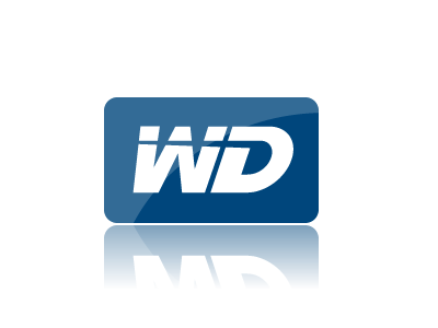 WD supporting teams in the Morocco Women's rally