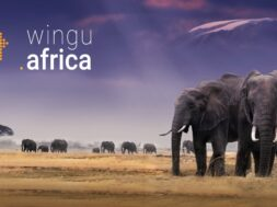 wingu.africa